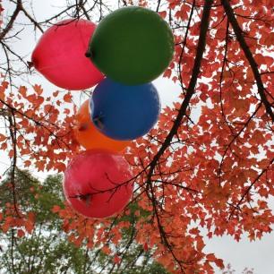 Lima buah balon terbang terbawa angin...