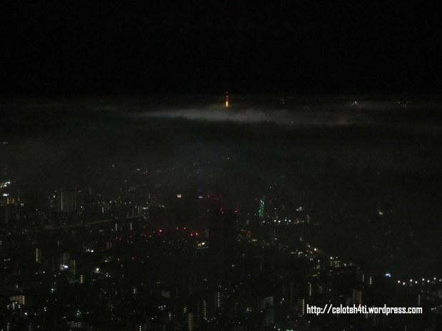 lumayan.. yg di tengah mencit itu Tokyo Tower