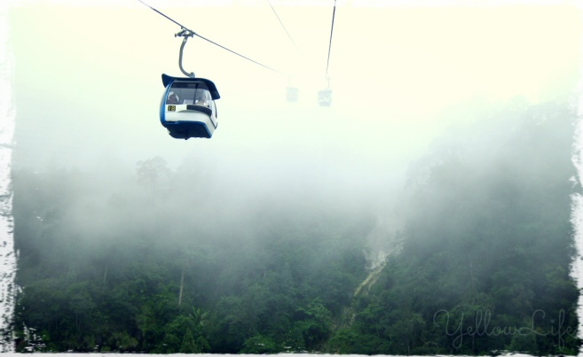 #tfp cable car