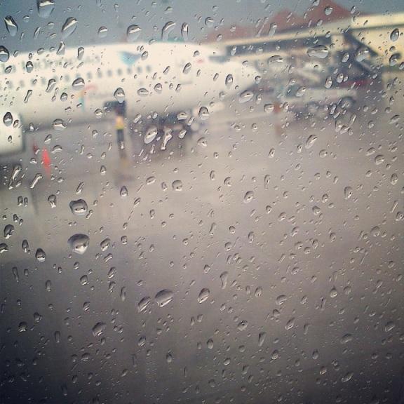 #tfp rainy landed