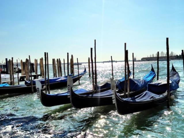 #tfp Suatu Pagi di Venezia