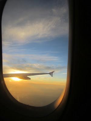#tfp sunrise