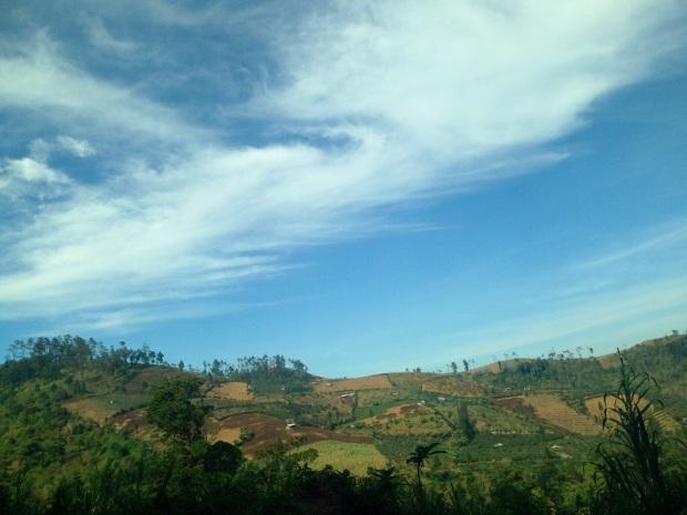 Masuk Nongkojajar... View ladang-ladang hijau dipadu langit biru... Ini gua bangetttt..... #halah