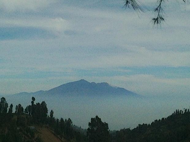 saya tidak tau ini gunung apa... Tapi kita bisa liat kalau kita lewat Nongkojajar..